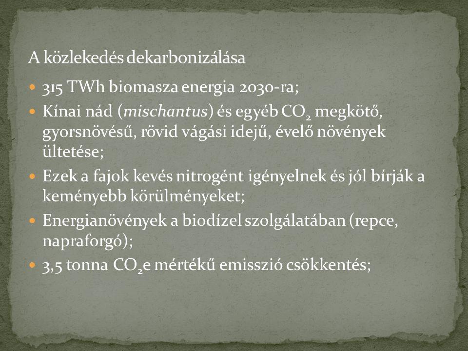 315 TWh biomasza energia 2030-ra; Kínai nád (mischantus) és egyéb CO 2 megkötő, gyorsnövésű, rövid vágási idejű, évelő növények ültetése; Ezek a fajok kevés nitrogént igényelnek és jól bírják a keményebb körülményeket; Energianövények a biodízel szolgálatában (repce, napraforgó); 3,5 tonna CO 2 e mértékű emisszió csökkentés;