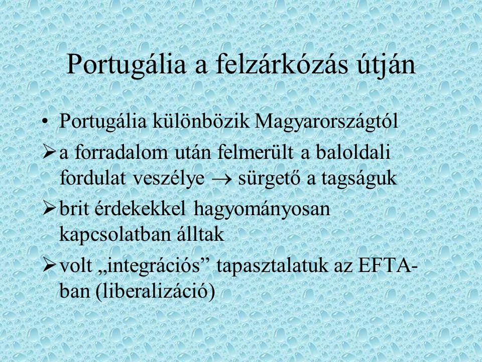 Portugália a felzárkózás útján Portugália különbözik Magyarországtól  a forradalom után felmerült a baloldali fordulat veszélye  sürgető a tagságuk