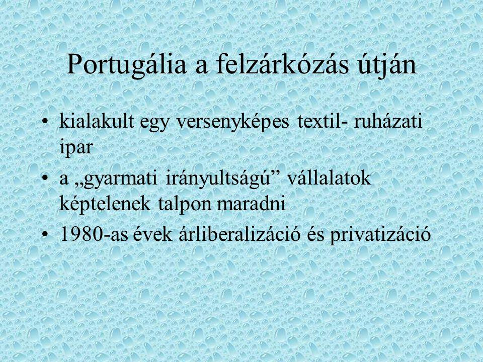 """Portugália a felzárkózás útján kialakult egy versenyképes textil- ruházati ipar a """"gyarmati irányultságú"""" vállalatok képtelenek talpon maradni 1980-as"""