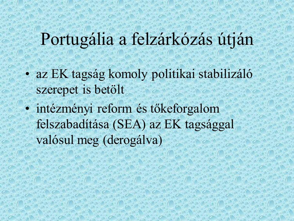 Portugália a felzárkózás útján az EK tagság komoly politikai stabilizáló szerepet is betölt intézményi reform és tőkeforgalom felszabadítása (SEA) az