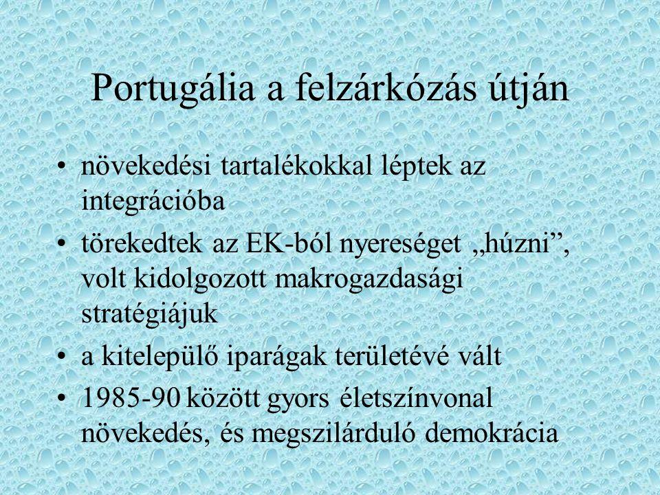 """Portugália a felzárkózás útján növekedési tartalékokkal léptek az integrációba törekedtek az EK-ból nyereséget """"húzni"""", volt kidolgozott makrogazdaság"""