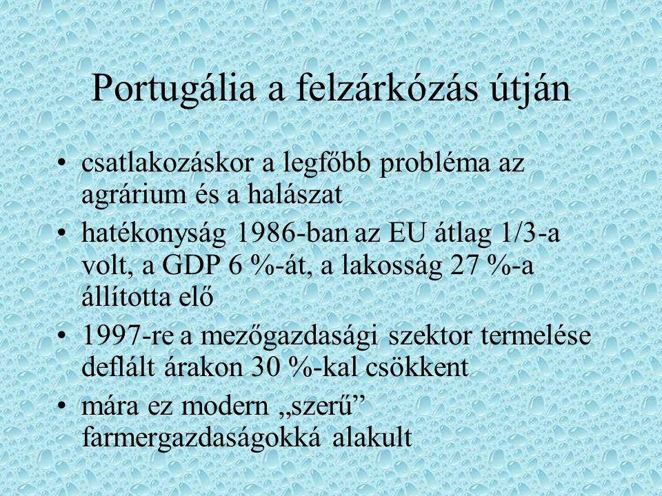 Portugália a felzárkózás útján csatlakozáskor a legfőbb probléma az agrárium és a halászat hatékonyság 1986-ban az EU átlag 1/3-a volt, a GDP 6 %-át,
