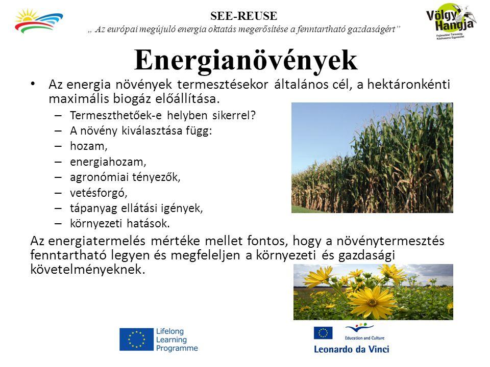 Energianövények Az energia növények termesztésekor általános cél, a hektáronkénti maximális biogáz előállítása.