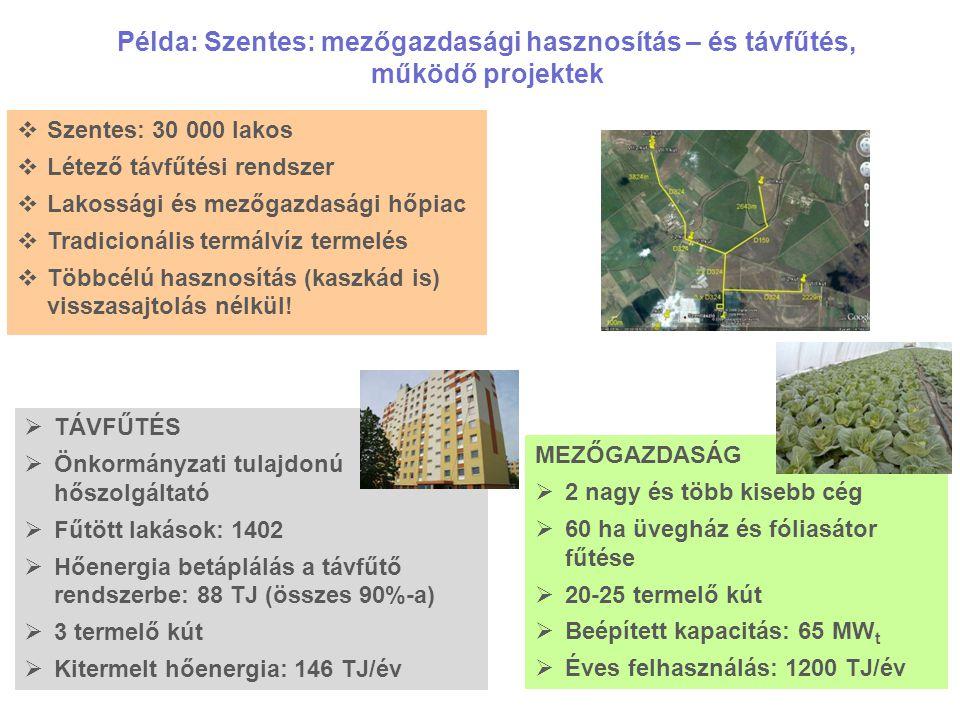13 Példa: Szentes: mezőgazdasági hasznosítás – és távfűtés, működő projektek  Szentes: 30 000 lakos  Létező távfűtési rendszer  Lakossági és mezőga