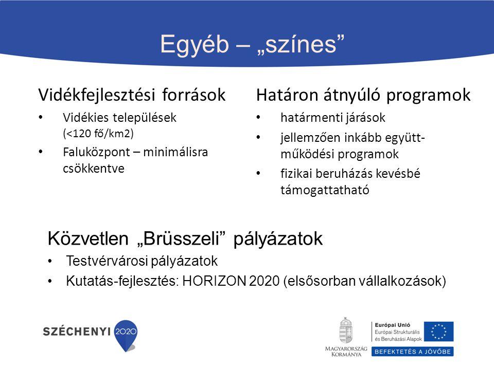 """Egyéb – """"színes"""" Közvetlen """"Brüsszeli"""" pályázatok Testvérvárosi pályázatok Kutatás-fejlesztés: HORIZON 2020 (elsősorban vállalkozások) Vidékfejlesztés"""