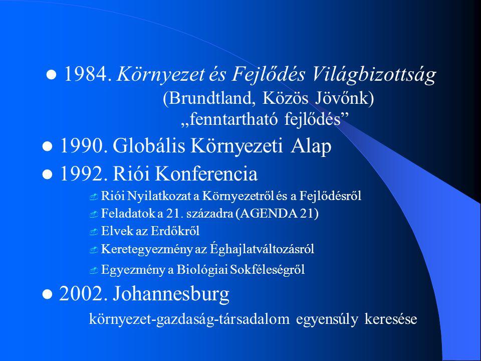 """1984. Környezet és Fejlődés Világbizottság (Brundtland, Közös Jövőnk) """"fenntartható fejlődés"""" 1990. Globális Környezeti Alap 1992. Riói Konferencia """