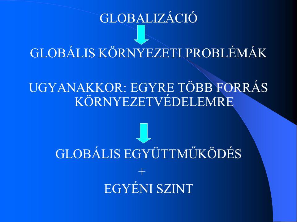 GLOBALIZÁCIÓ GLOBÁLIS KÖRNYEZETI PROBLÉMÁK UGYANAKKOR: EGYRE TÖBB FORRÁS KÖRNYEZETVÉDELEMRE GLOBÁLIS EGYÜTTMŰKÖDÉS + EGYÉNI SZINT