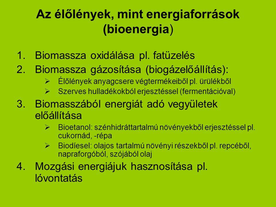 Az élőlények, mint energiaforrások (bioenergia) 1.Biomassza oxidálása pl. fatüzelés 2.Biomassza gázosítása (biogázelőállítás):  Élőlények anyagcsere
