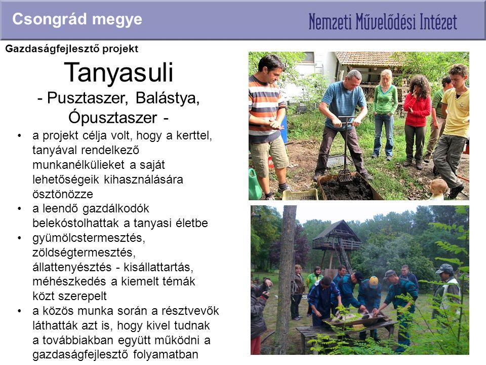 Tanyasuli - Pusztaszer, Balástya, Ópusztaszer - Csongrád megye a projekt célja volt, hogy a kerttel, tanyával rendelkező munkanélkülieket a saját lehe