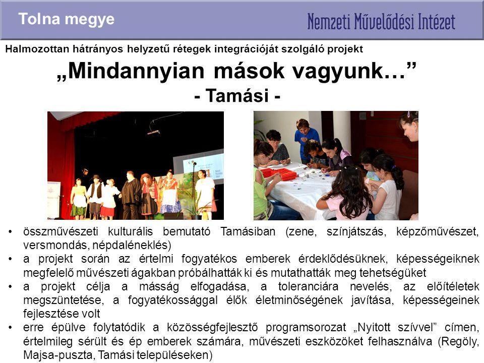 """""""Mindannyian mások vagyunk…"""" - Tamási - Tolna megye összművészeti kulturális bemutató Tamásiban (zene, színjátszás, képzőművészet, versmondás, népdalé"""