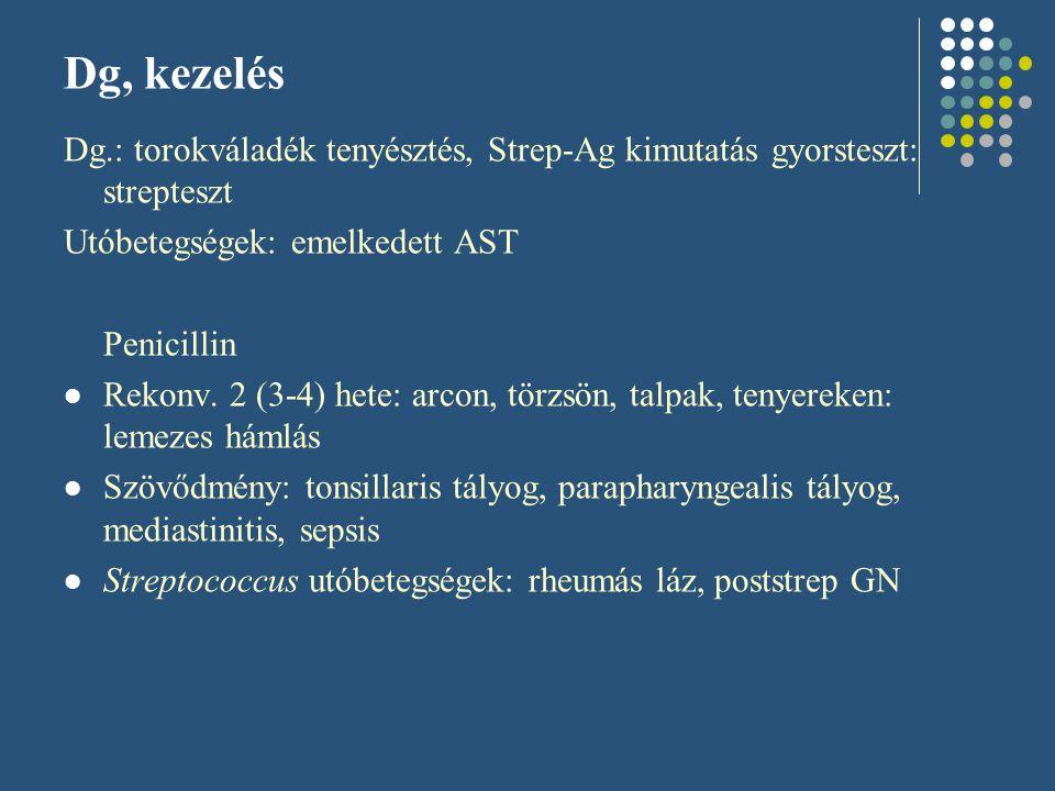Diagnózis Antigén kimutatás: gyorsteszt: Streptest Nasopharyngealis váladék tenyésztés Vérkép: leukocytosis, balra toltság (diff dg: mononucleosis: quali: aktivált lymphocyták) Acut tüneteknél: nem dg-kus az AST, amely az utóbetegség kizárásának eszköze Más kolonizáló baktériumok: Staphylococcus spp., S.pneumoniae, H.