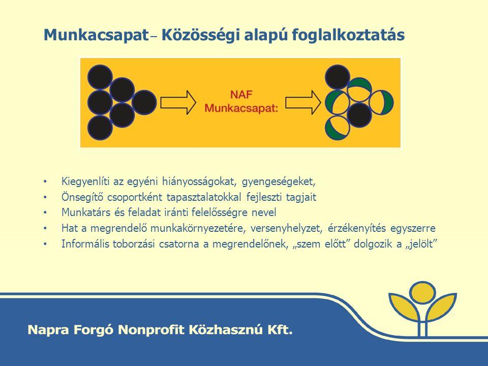 Munkacsapat _ Közösségi alapú foglalkoztatás Kiegyenlíti az egyéni hiányosságokat, gyengeségeket, Önsegítő csoportként tapasztalatokkal fejleszti tagj