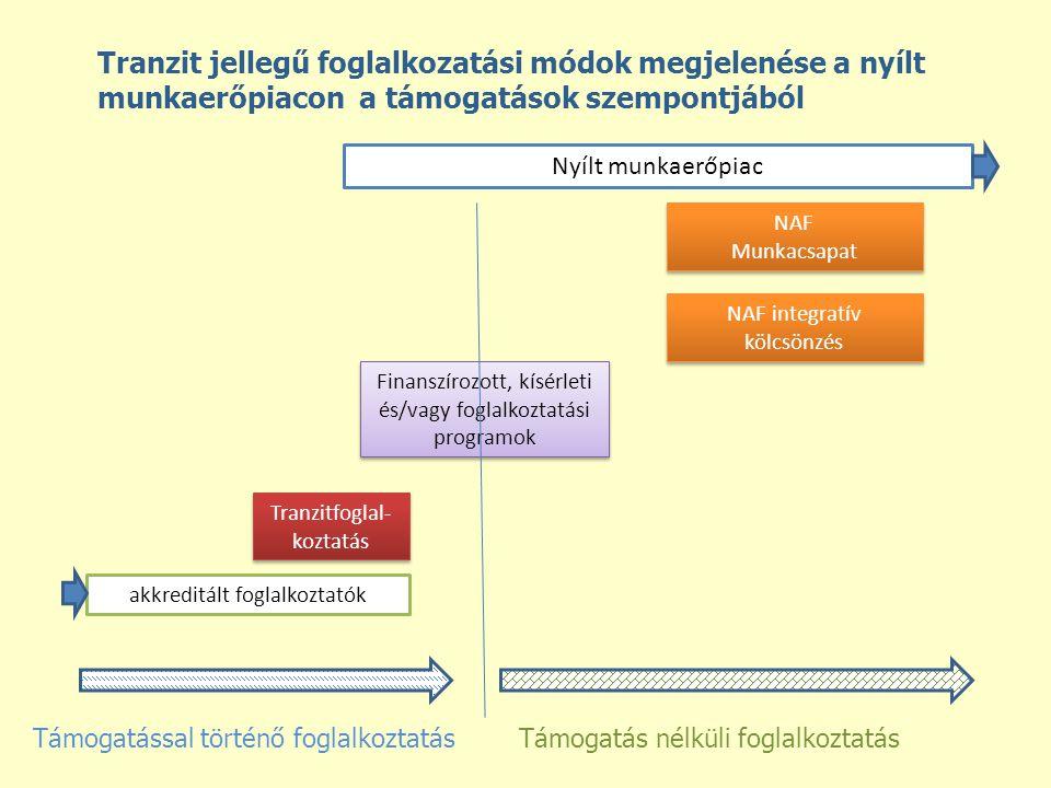 akkreditált foglalkoztatók Nyílt munkaerőpiac Tranzitfoglal- koztatás NAF Munkacsapat NAF Munkacsapat NAF integratív kölcsönzés Finanszírozott, kísérleti és/vagy foglalkoztatási programok Támogatás nélküli foglalkoztatásTámogatással történő foglalkoztatás Tranzit jellegű foglalkozatási módok megjelenése a nyílt munkaerőpiacon a támogatások szempontjából