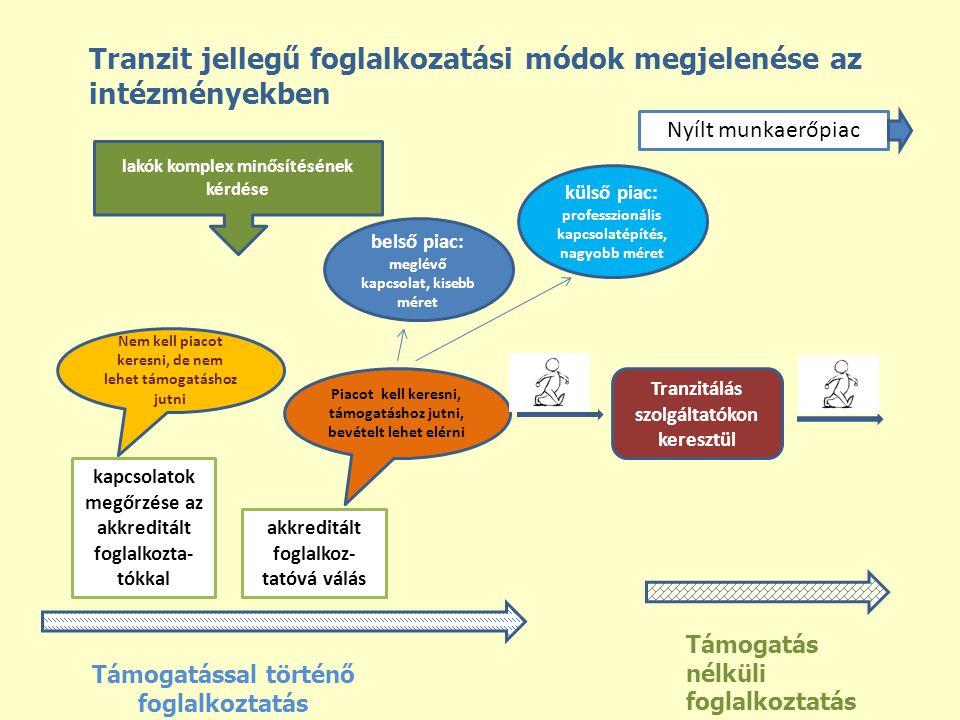 Nyílt munkaerőpiac Támogatás nélküli foglalkoztatás Támogatással történő foglalkoztatás Tranzit jellegű foglalkozatási módok megjelenése az intézménye