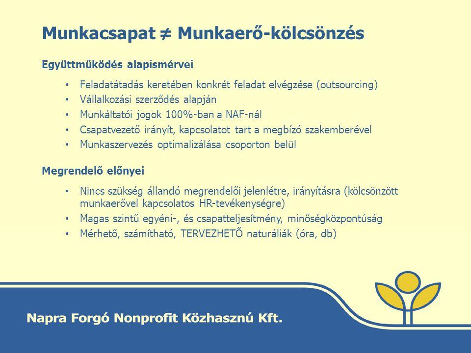 Munkacsapat ≠ Munkaerő-kölcsönzés Együttműködés alapismérvei Feladatátadás keretében konkrét feladat elvégzése (outsourcing) Vállalkozási szerződés al