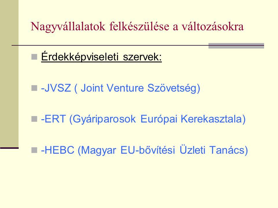 Nagyvállalatok felkészülése a változásokra Érdekképviseleti szervek: -JVSZ ( Joint Venture Szövetség) -ERT (Gyáriparosok Európai Kerekasztala) -HEBC (Magyar EU-bővítési Üzleti Tanács)