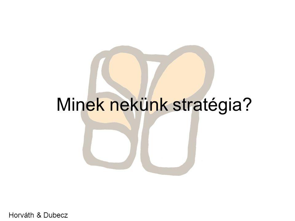 Minek nekünk stratégia Horváth & Dubecz