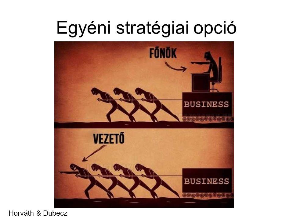 Egyéni stratégiai opció Horváth & Dubecz