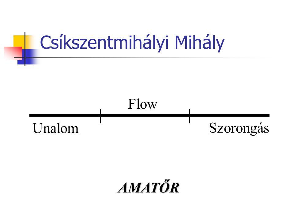 Csíkszentmihályi Mihály Flow Unalom Szorongás AMATŐR