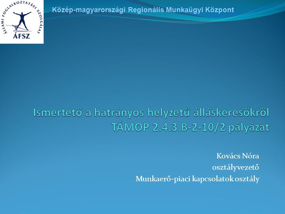Munkaügyi szervezet fő célja: elhelyezkedések elősegítése Partnereink: munkáltatók és álláskeresők Szervezeti felépítés Budapest és Pest megyei területén - 22 kirendeltség (11 fővárosi, 11 Pest megyei kirendeltség) - 15 központi osztály (meghatározott feladatkörrel) - projektszervezetek (TÁMOP 1.1.1., TÁMOP 1.1.2, TÁMOP 1.1.3) Közép-magyarországi Regionális Munkaügyi Központ szervezete