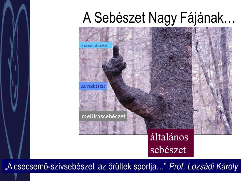 """A Sebészet Nagy Fájának… 1846 """"A csecsemő-szívsebészet az őrültek sportja… Prof."""