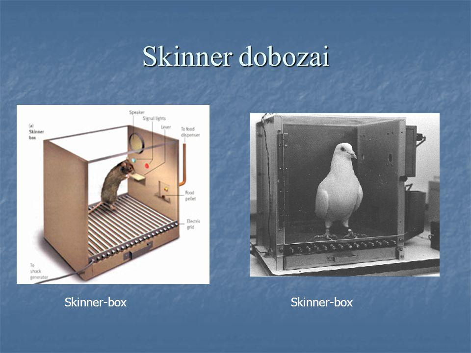 Skinner dobozai Skinner-box