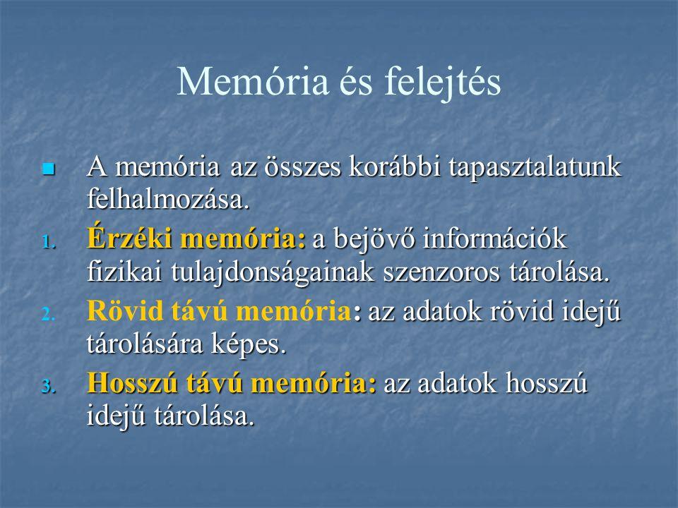 Memória és felejtés A memória az összes korábbi tapasztalatunk felhalmozása. A memória az összes korábbi tapasztalatunk felhalmozása. 1. Érzéki memóri