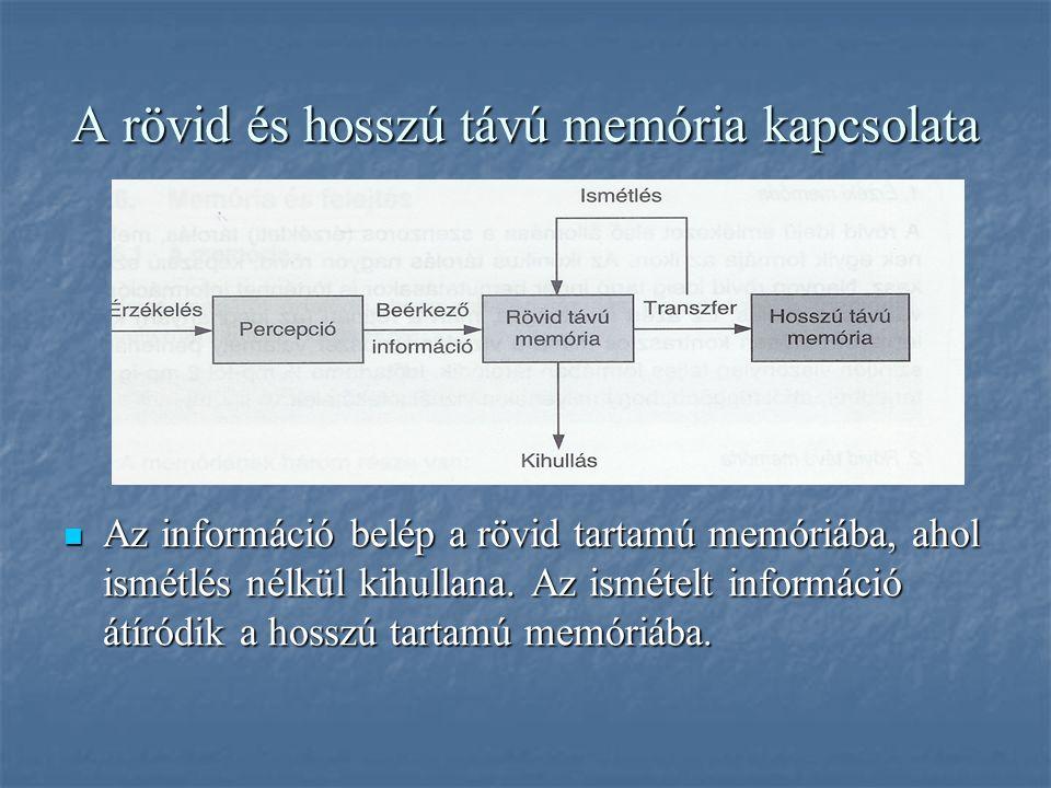 A rövid és hosszú távú memória kapcsolata Az információ belép a rövid tartamú memóriába, ahol ismétlés nélkül kihullana. Az ismételt információ átíród