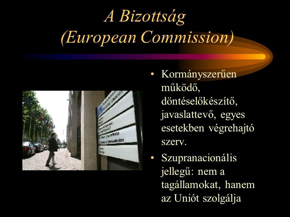 A Bizottság (European Commission) Kormányszerűen működő, döntéselőkészítő, javaslattevő, egyes esetekben végrehajtó szerv. Szupranacionális jellegű: n