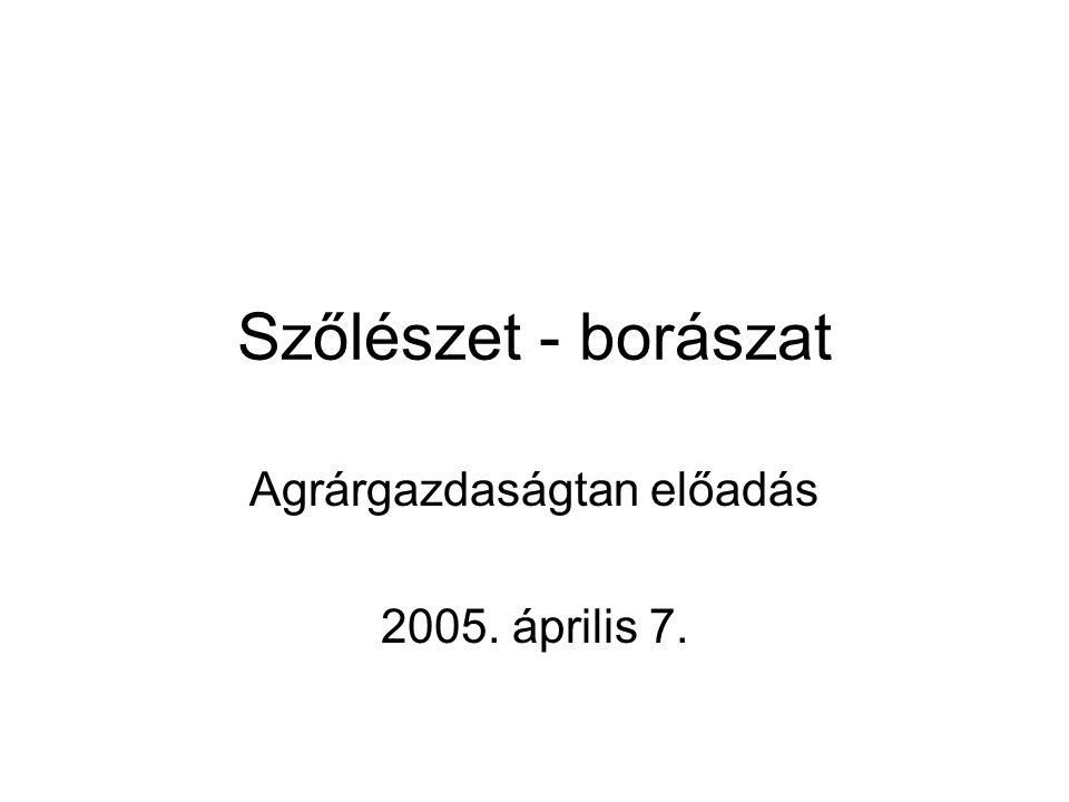 Szőlészet - borászat Agrárgazdaságtan előadás 2005. április 7.