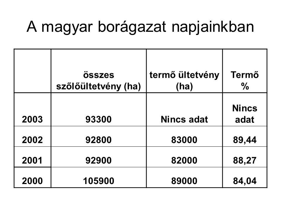 A magyar borágazat napjainkban összes szőlőültetvény (ha) termő ültetvény (ha) Termő % 200393300Nincs adat 2002928008300089,44 2001929008200088,27 200