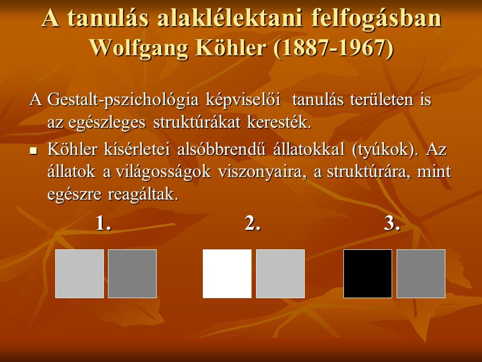 A tanulás alaklélektani felfogásban Wolfgang Köhler (1887-1967) A Gestalt-pszichológia képviselői tanulás területen is az egészleges struktúrákat kere