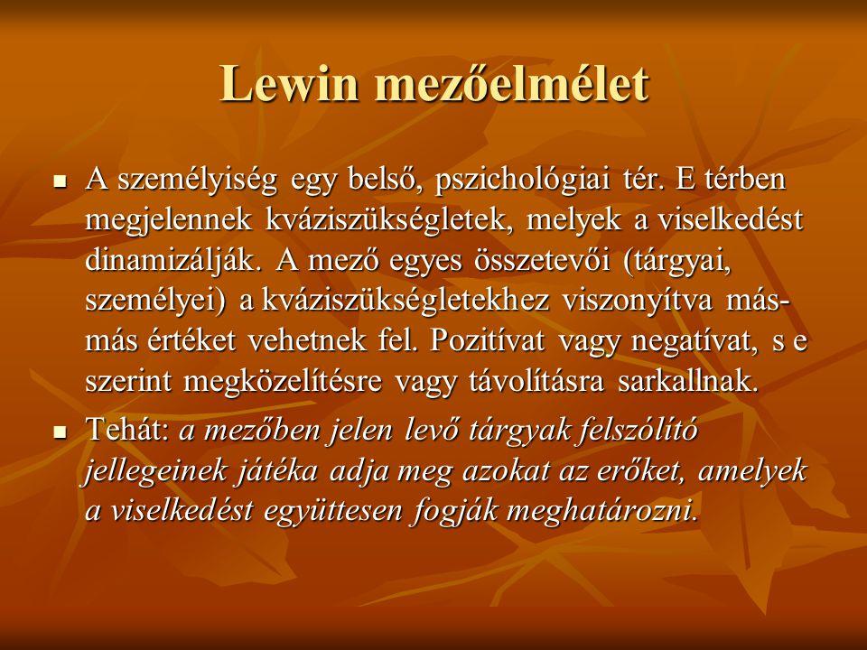 Lewin mezőelmélet A személyiség egy belső, pszichológiai tér. E térben megjelennek kváziszükségletek, melyek a viselkedést dinamizálják. A mező egyes