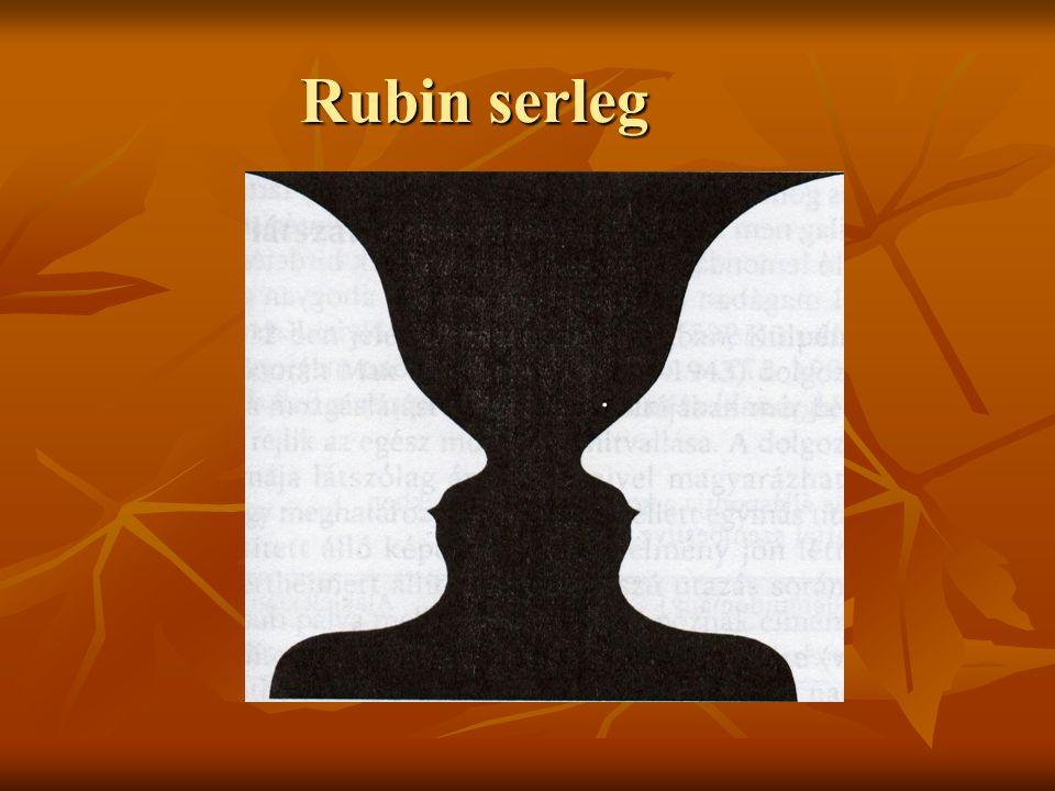 Rubin serleg.