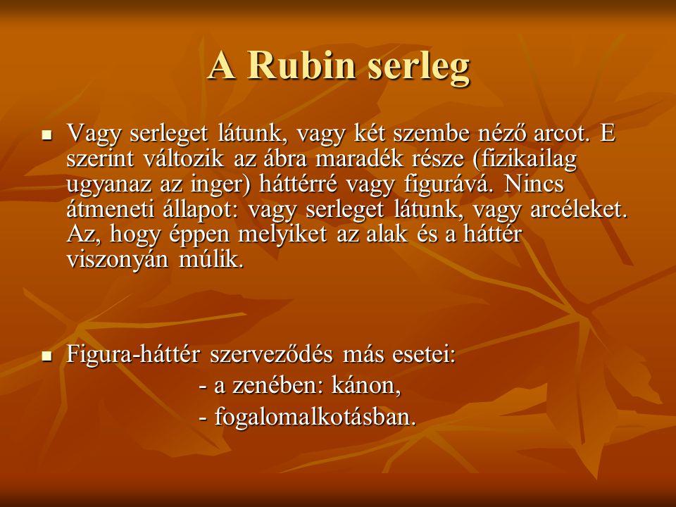 A Rubin serleg Vagy serleget látunk, vagy két szembe néző arcot. E szerint változik az ábra maradék része (fizikailag ugyanaz az inger) háttérré vagy