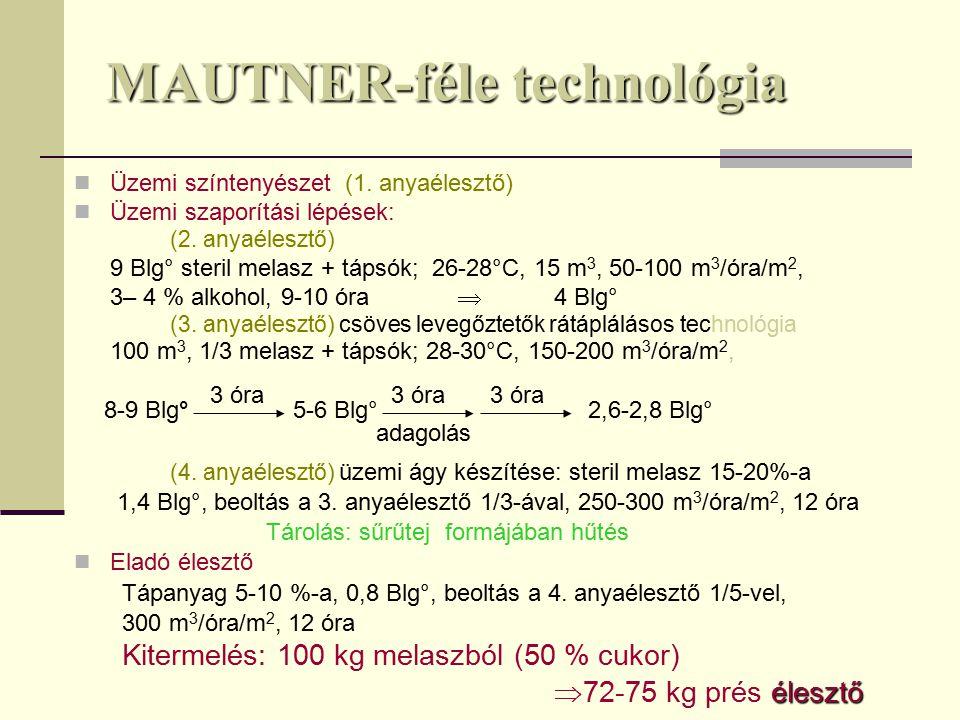 MAUTNER-féle technológia Üzemi színtenyészet (1.anyaélesztő) Üzemi szaporítási lépések: (2.