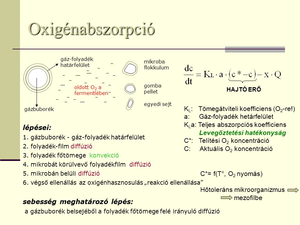mikroba flokkulum gomba pellet egyedi sejt gázbuborék gáz-folyadék határfelület oldott O 2 a fermentlében lépései: 1.