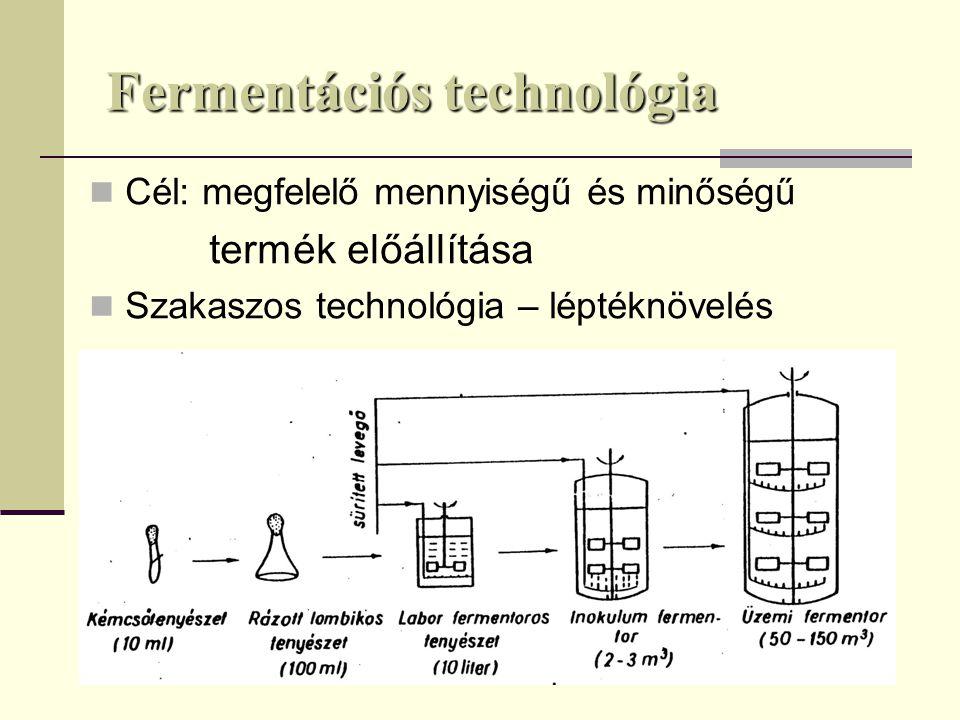 Feldolgozási technológia Biomassza kinyerés Fermentlé szeparálása, élesztőtej mosása, sűrítése, 20-22 % sz.a.