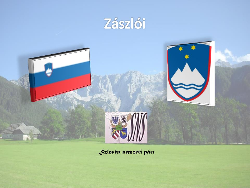 Szlovén nemzeti párt