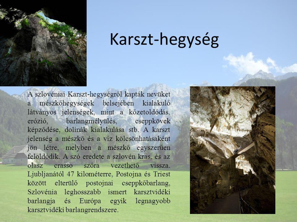 Karszt-hegység A szlovéniai Karszt-hegységről kapták nevüket a mészkőhegységek belsejében kialakuló látványos jelenségek, mint a kőzetoldódás, erózió,