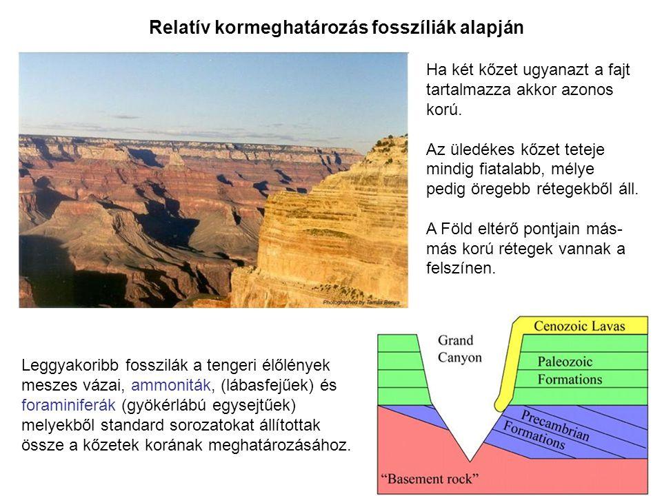 Relatív kormeghatározás fosszíliák alapján Ha két kőzet ugyanazt a fajt tartalmazza akkor azonos korú. Az üledékes kőzet teteje mindig fiatalabb, mély