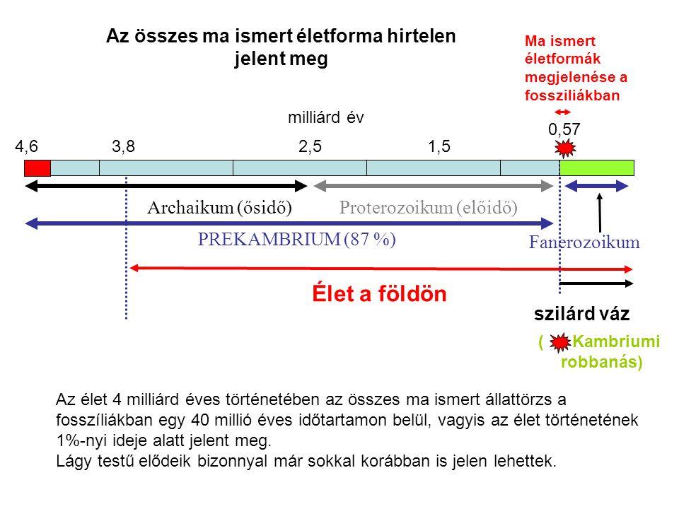Archaikum (ősidő)Proterozoikum (előidő) Fanerozoikum PREKAMBRIUM (87 %) Élet a földön 4,6 0,57 3,82,5 1,5 szilárd váz milliárd év ( Kambriumi robbanás