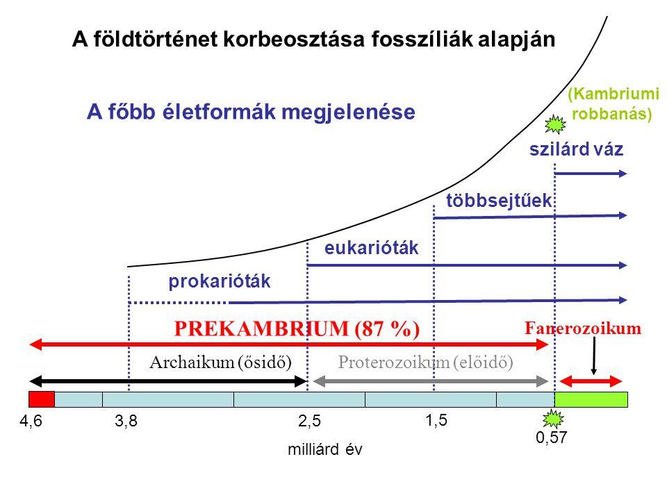 A földtörténet korbeosztása fosszíliák alapján Archaikum (ősidő)Proterozoikum (előidő) Fanerozoikum PREKAMBRIUM (87 %) prokarióták eukarióták 4,6 0,57