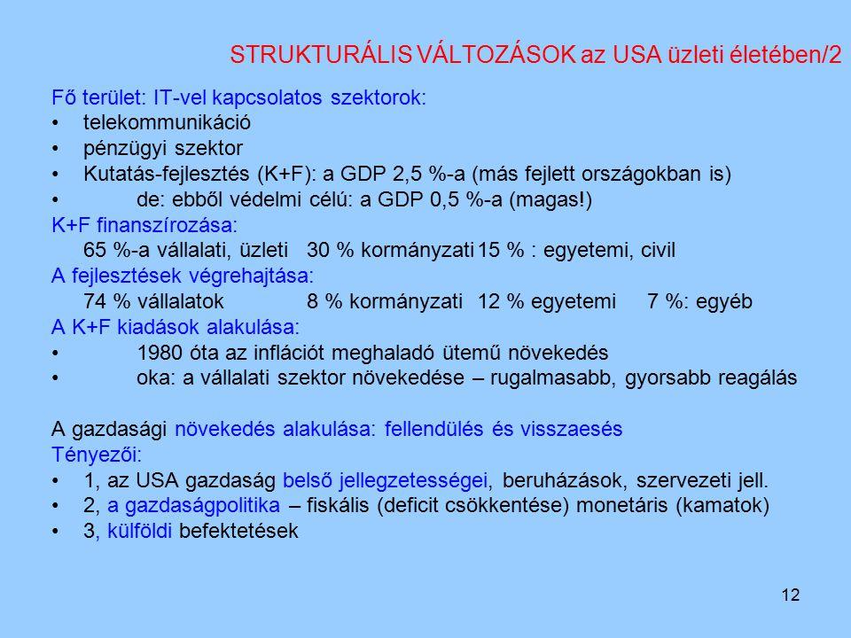 12 STRUKTURÁLIS VÁLTOZÁSOK az USA üzleti életében/2 Fő terület: IT-vel kapcsolatos szektorok: telekommunikáció pénzügyi szektor Kutatás-fejlesztés (K+