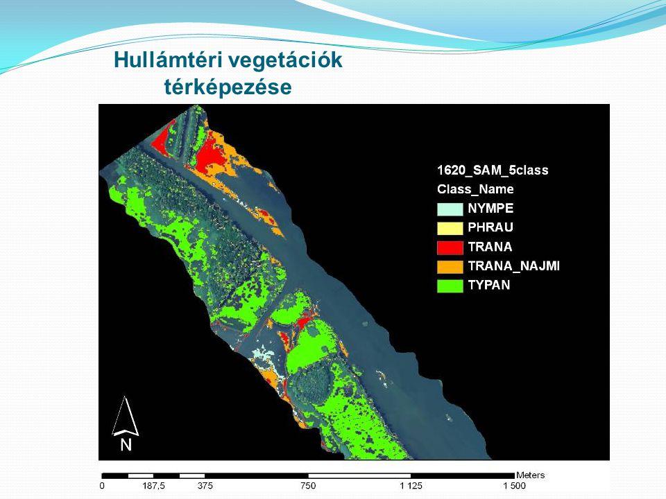 Hullámtéri vegetációk térképezése