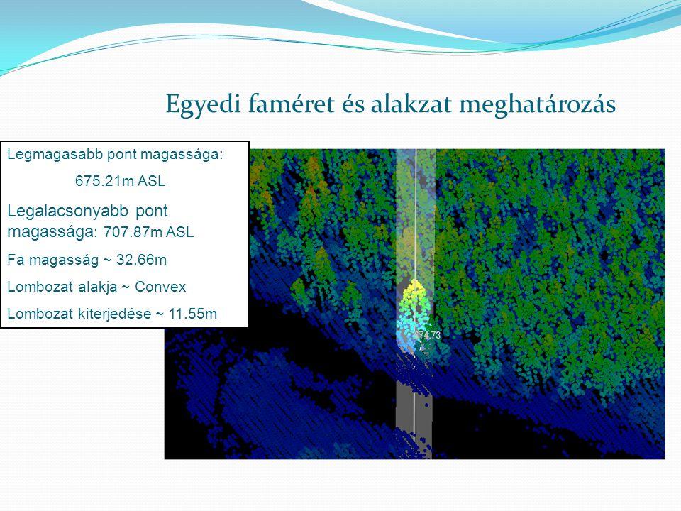 Egyedi faméret és alakzat meghatározás Legmagasabb pont magassága: 675.21m ASL Legalacsonyabb pont magassága : 707.87m ASL Fa magasság ~ 32.66m Lombozat alakja ~ Convex Lombozat kiterjedése ~ 11.55m