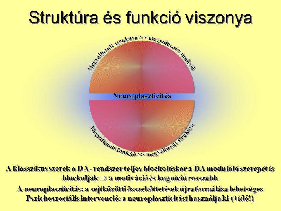 Struktúra és funkció viszonya A klasszikus szerek a DA- rendszer teljes blockoláskor a DA moduláló szerepét is blockolják  a motiváció és kogníció ro
