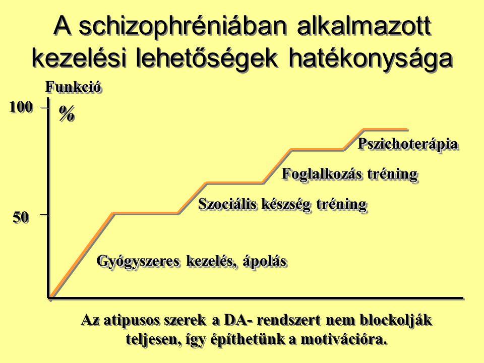 A schizophréniában alkalmazott kezelési lehetőségek hatékonysága 50 100 % % Gyógyszeres kezelés, ápolás Szociális készség tréning Foglalkozás tréning
