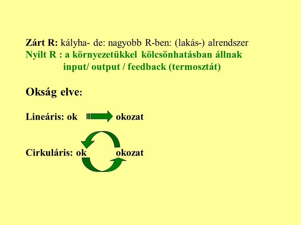 Zárt R: kályha- de: nagyobb R-ben: (lakás-) alrendszer Nyilt R : a környezetükkel kölcsönhatásban állnak input/ output / feedback (termosztát) Okság e