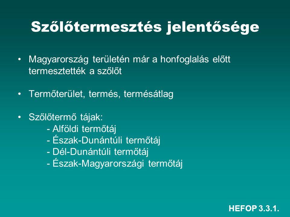 HEFOP 3.3.1. Szőlőtermesztés jelentősége Magyarország területén már a honfoglalás előtt termesztették a szőlőt Termőterület, termés, termésátlag Szőlő